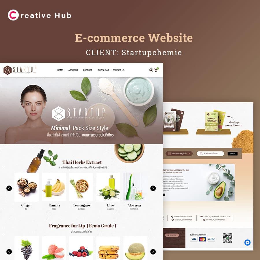 Web-e-commerce-website2